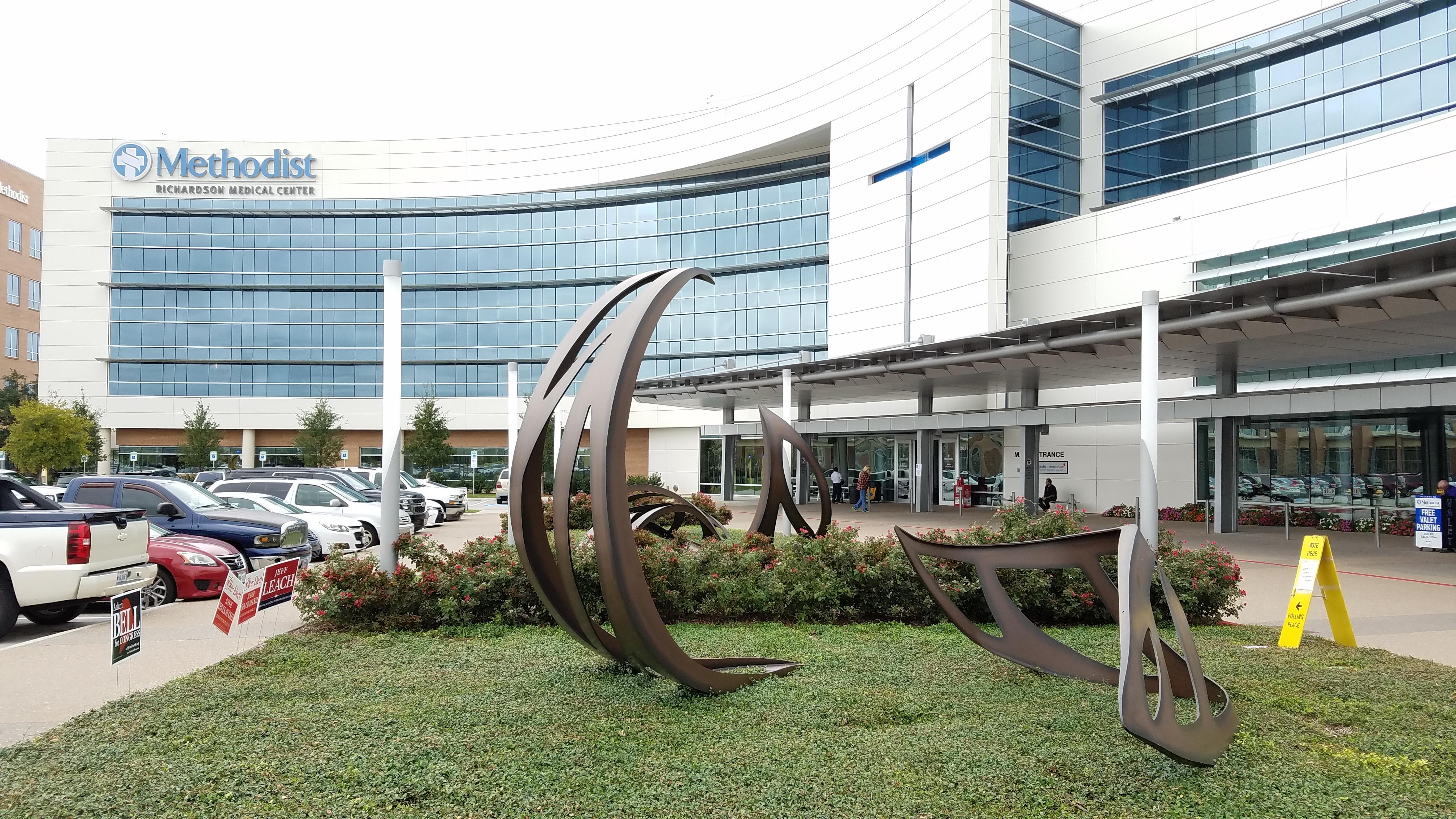 Large Outdoor Sculptures Expert Art Services